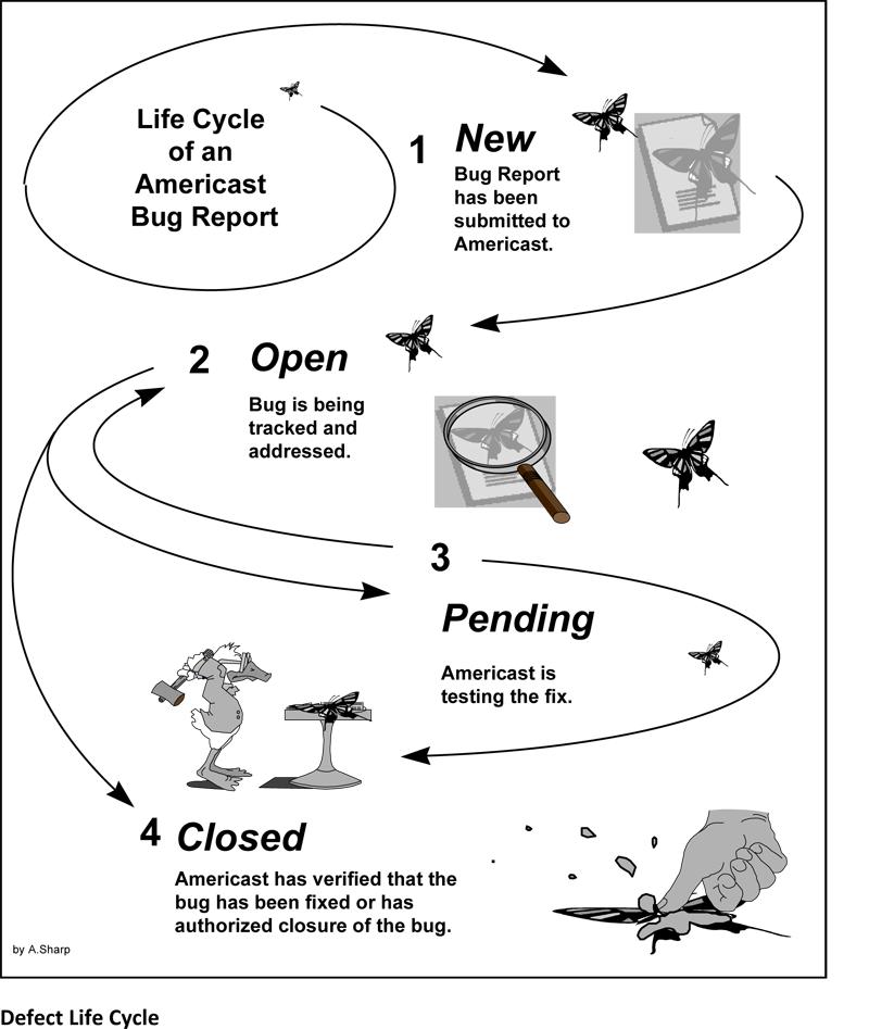 Technical Illustration - Defect Report Procedure (PowerPoint)