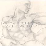 Studio Drawing, Michelangelo Study - Pencil