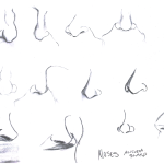 Studio Lessons, Noses - Pencil