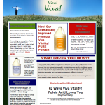 Viva Health Products - Branding and Web Site (inspired by a template)