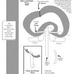 Technical Illustration - Product Diagram